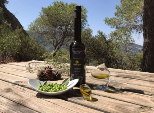 Producción de aceite de oliva arbequina - HENRI MOR-1